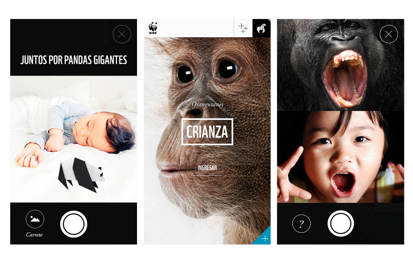 WORLD WILDLIFE FUND  APP